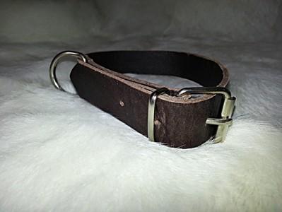 Collar para perro de 25 mm
