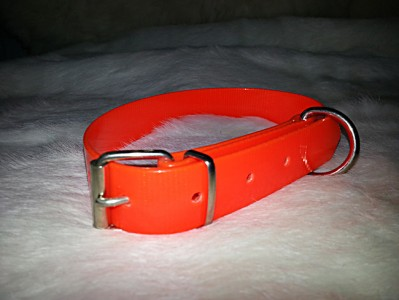 Collar para perro fluorescente