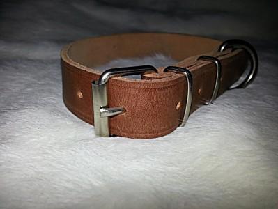 Collar para perro de 35 mm
